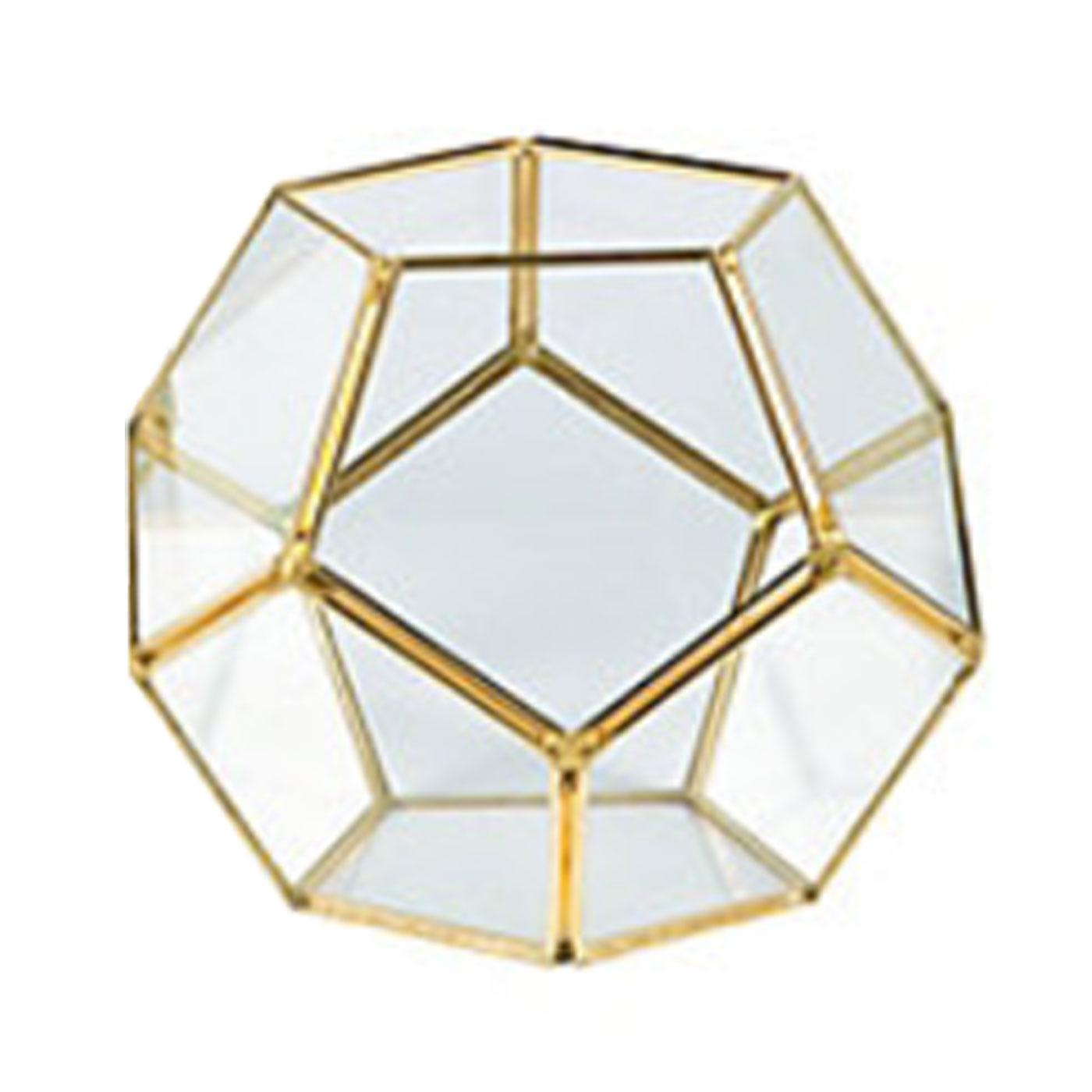 Gold Geometric Terrarium 01 Micro Plant Studio