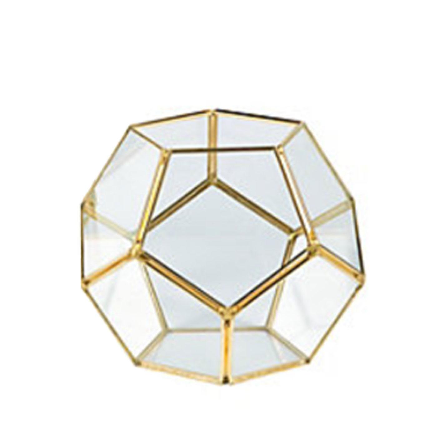 Gold Geometric Terrarium 02 Micro Plant Studio
